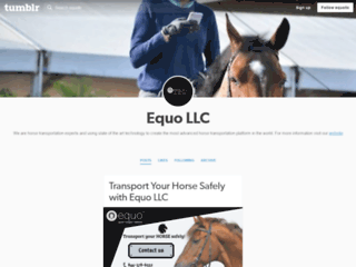 Skilled Experts to Transport Your Horse