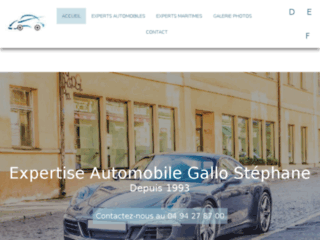 Détails : Expertises Automobile Gallo Stéphane