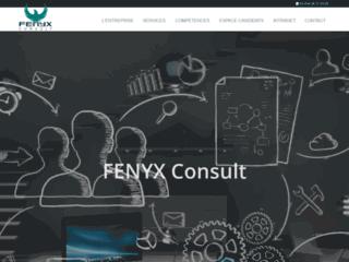 Capture du site http://www.fenyx.fr