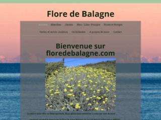 Flore de Balagne