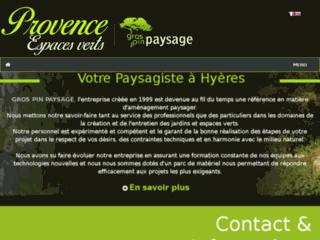 Détails : GROS PIN PAYSAGE