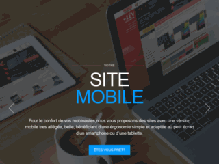 Détails : IT WEB SOLUTION