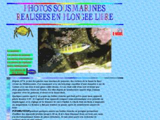 Photos sous-marines r�alis�es en plong�e libre