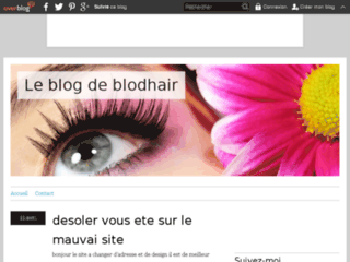 Le blog de blodhair
