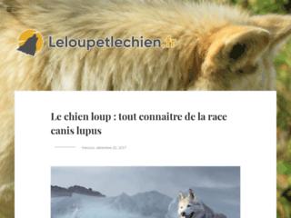 Détails : En savoir plus sur le chien-loup
