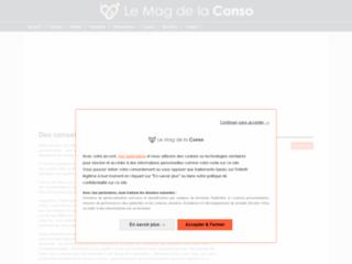 Aperçu du site Le Mag de la Conso