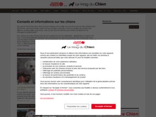 Aperçu du site Le Mag du Chien