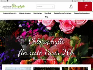 Fleuriste Paris 20ème - Les surprises de chlorophylle