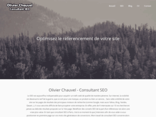 Blog SEO et webmarketing par un consultant web