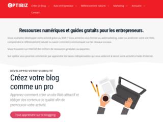 Capture du site http://www.optibiz.fr