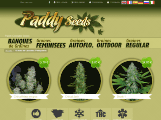 Détails : Graines de Cannabis | Paddy Seeds