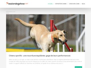 Détails : Passion dog show