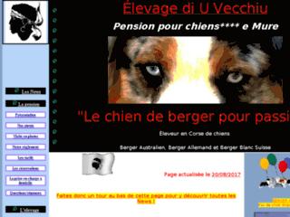 Pension Canine Pension pour chiens Corse -  Elevage de chiens en Corse - E Mure Di u Vecchiu