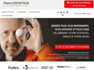 Détails : pierrecocheteux.com