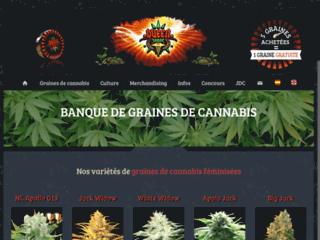 Détails : Queen-seeds.fr Graines féminisées et autofloraison