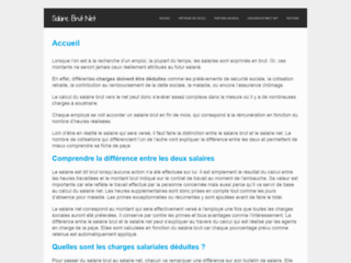 Aperçu du site Salaire Brut Net