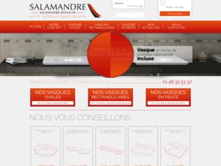 Détails : Salamandre Design : plan vasque en résine