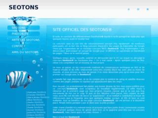 SEOTONS