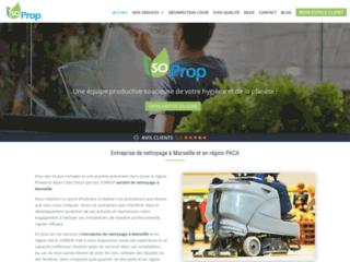Détails : Entreprise de nettoyage