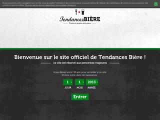 Bière Heineken - Tendances Bière