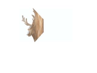 Créations de meubles en carton sur mesure - TonkR