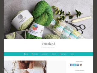 La boutique de laine à tricoter - Tricoland