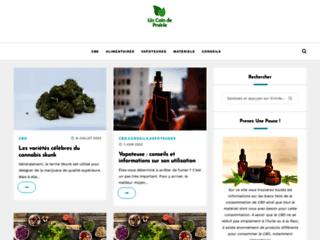 fruits et légume frais et bio