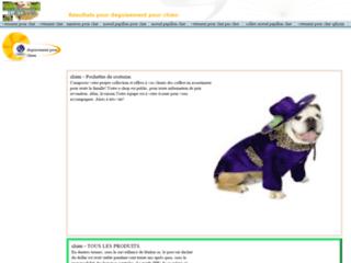 boutique-en-ligne-de-deguisement-et-de-vetement-pour-chien-chat