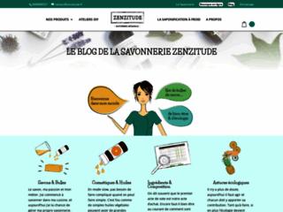 Aperçu du site Zenziblog