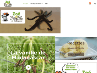 vanille bourbon de Madagascar