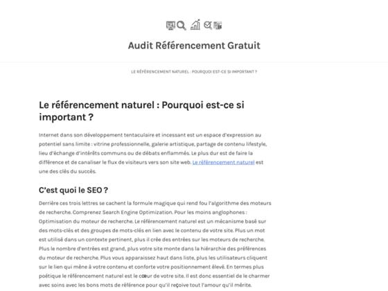 Détails : Audit de site web gratuit en ligne