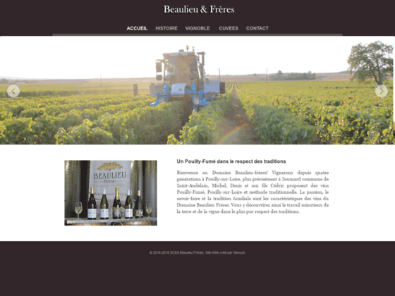 Détails : Producteurs de Vins Pouilly-Fumé