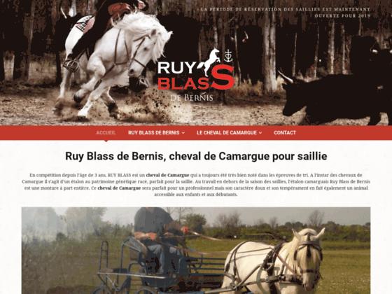 Détails : Ruy Blass