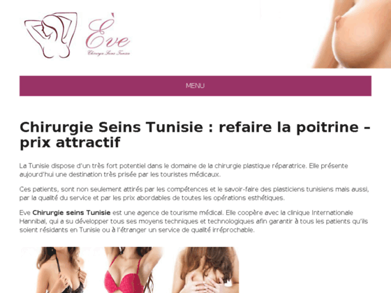 Détails : Chirurgie des seins en Tunisie