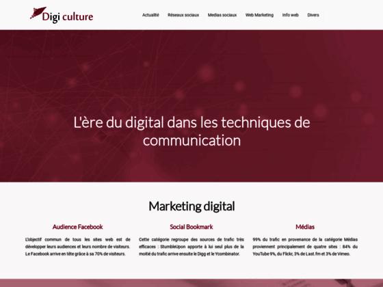 Détails : La culture web : Les aspect de la culture digitale
