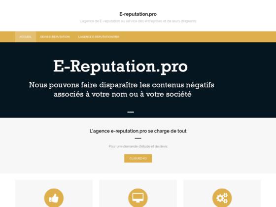 Détails : E-reputation