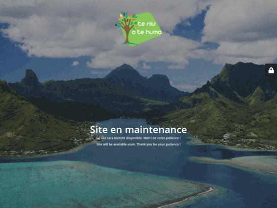 image du site https://www.handicap-polynesie.com/