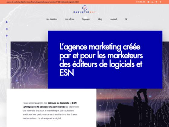 Détails : Développez votre activité par le marketing digital dans le secteur IT