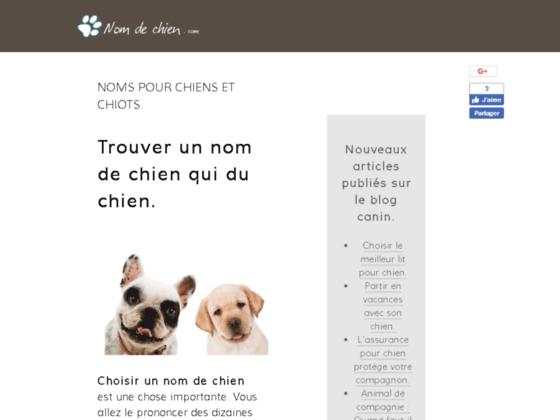 Détails : Noms et prénoms pour chien et chiot.