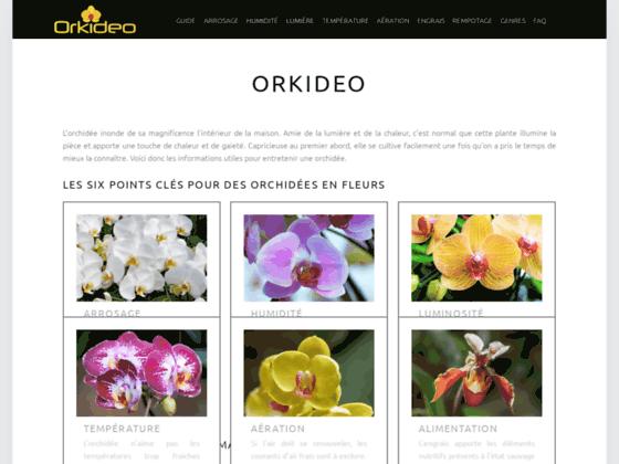 Guide Orkideo sur les orchidées