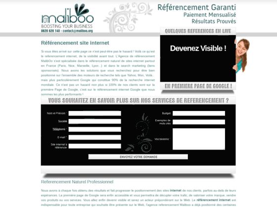 Détails : Expert référencement sites