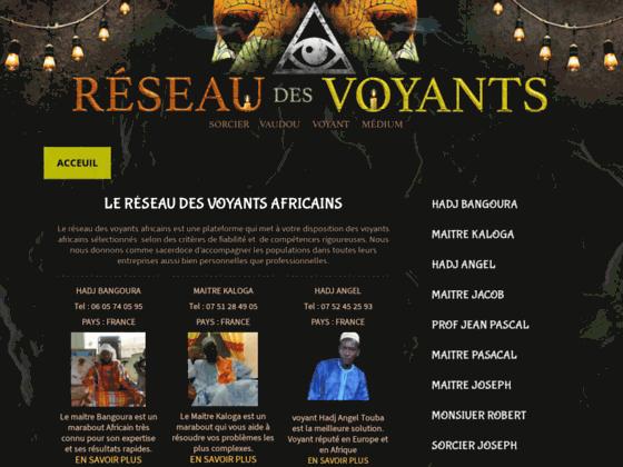 image du site https://www.reseau-des-voyants.com/