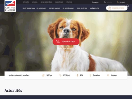 Photo image Societe centrale canine