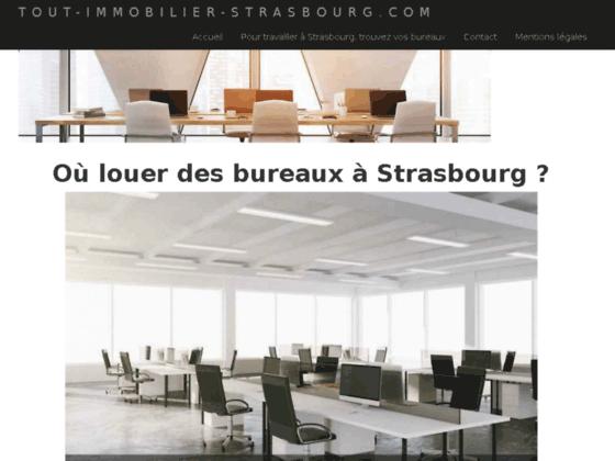 Détails : tout-immobilier-strasbourg.com