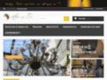 Détails : Bijouterie en ligne de bijoux en or