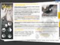 Voir la fiche détaillée : Canyoning, Via Corda et Via Ferrata avec Vertical-Aventure