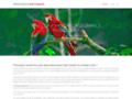 Détails : Devis simulation en Assurance Perroquet gratuit