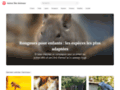 Détails : Autour des animaux