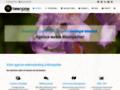 Détails : Développement de stratégie Internet et e-commerce, à Montpellier