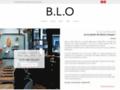 Détails : BLO, restaurant de viande situé à Lyon